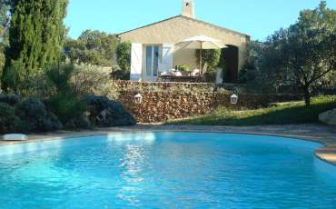 Luxury Villa Rental_pool2